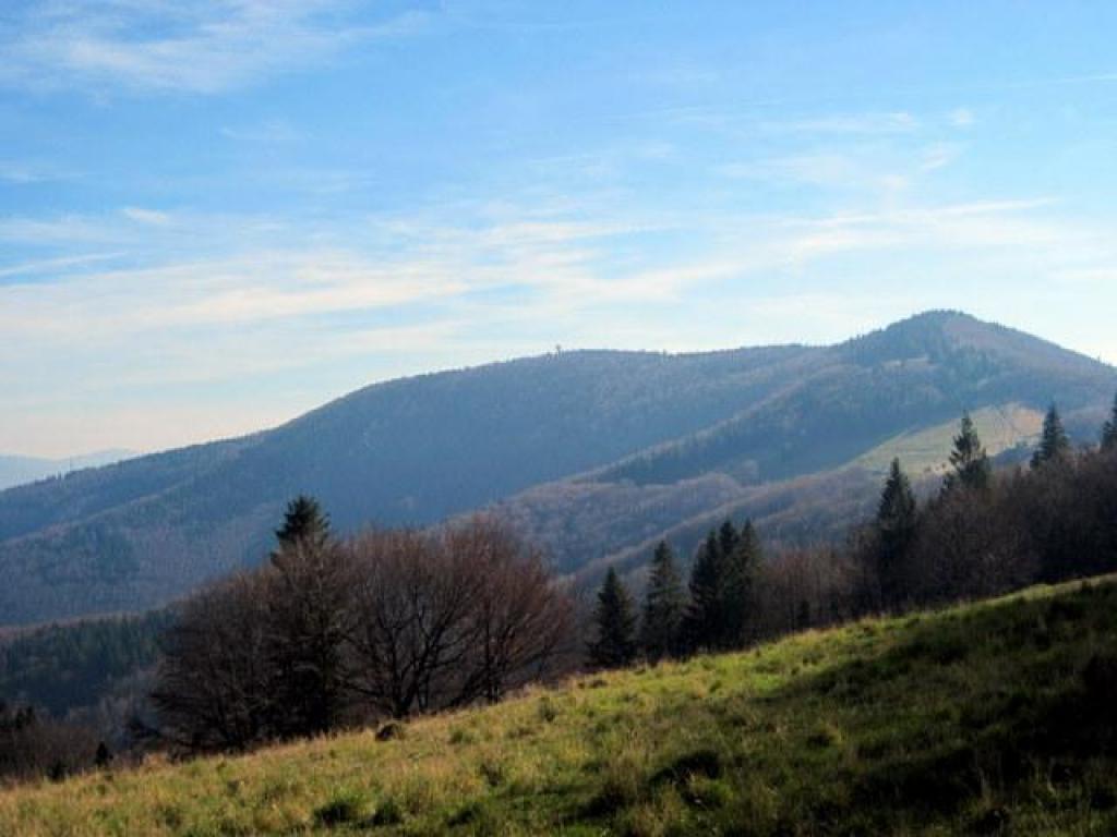 Czantoria w Beskidzie Śląskim