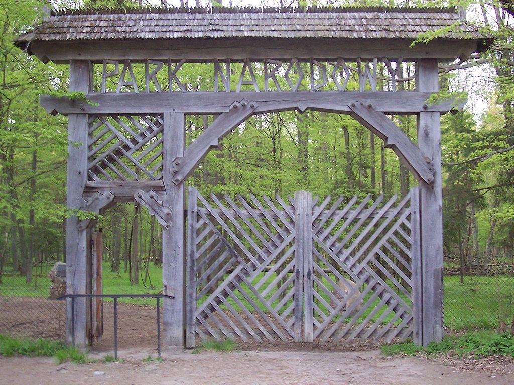 Białowieski Park Narodowy 5